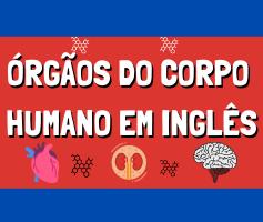 Órgãos do corpo humano em inglês